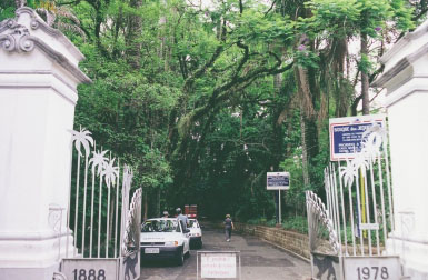 09907-1969-principal-bosque20dos20jequitibas20-20campinas
